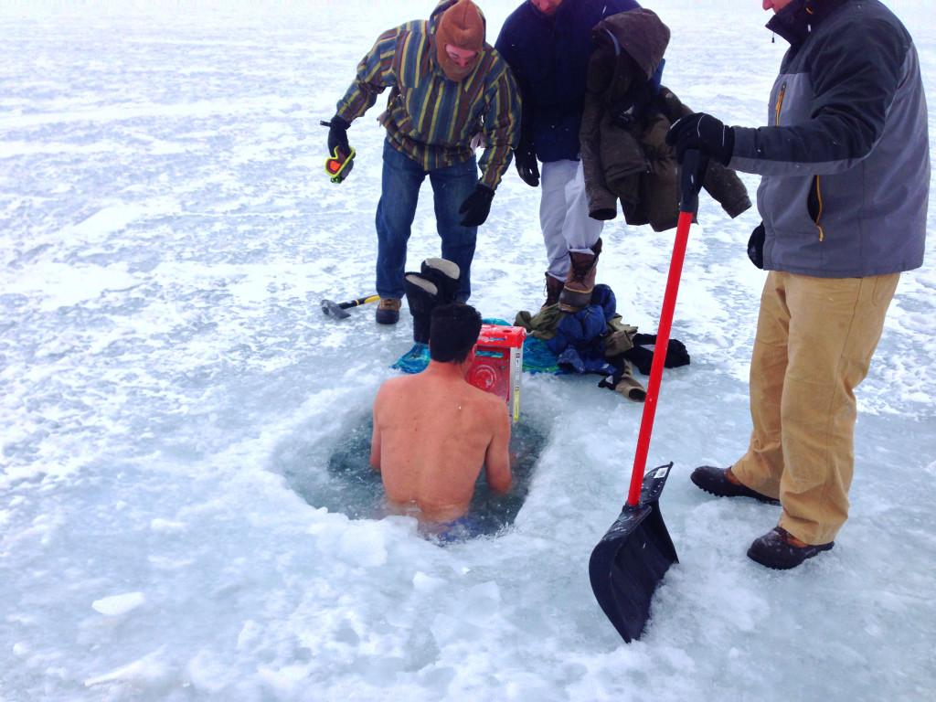 Polar Bear Dip
